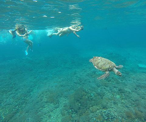 バリ島とはまた一味違った景色を楽しめるでしょう