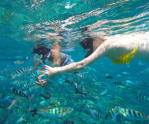 レンボンガン島周辺の海を満喫