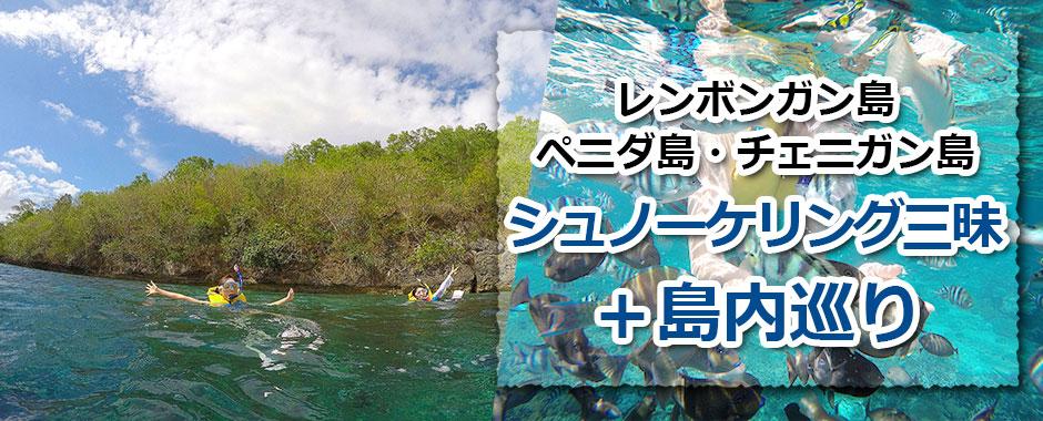 トキメキバリ島観光 レンボンガン島+ペニダ島+チェニガン島 シュノーケリング三昧+マングローブツアー+島内巡り