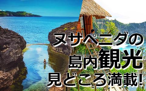 トキメキバリ島観光 厳選レンボンガン島 ヌサペニダアイランドツアー 特徴