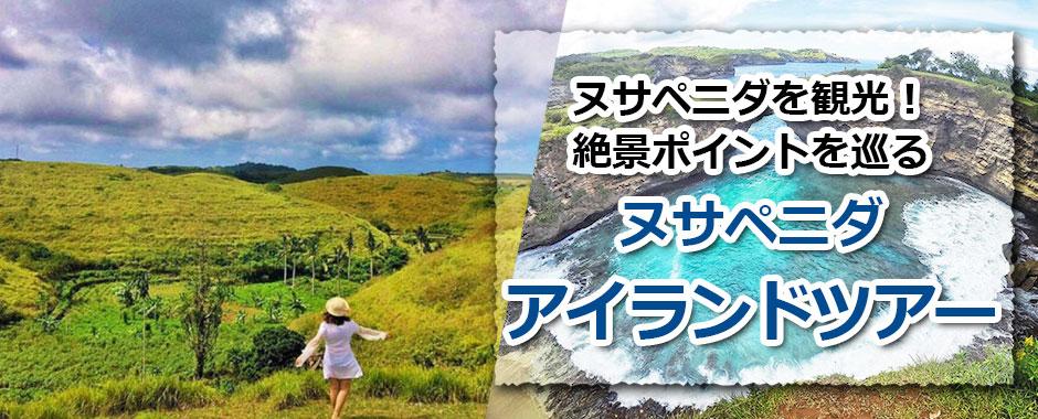 トキメキバリ島観光 厳選レンボンガン島 ヌサペニダアイランドツアー