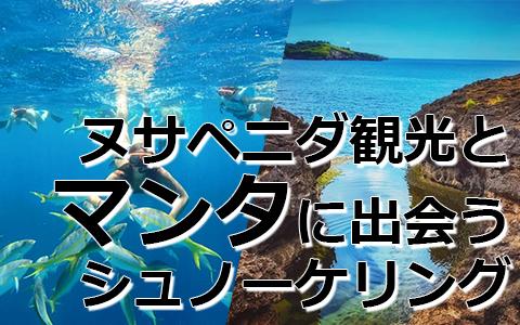 トキメキバリ島観光 厳選レンボンガン島 マンタポイントでシュノーケリングとヌサペニダアイランドツアー 特徴