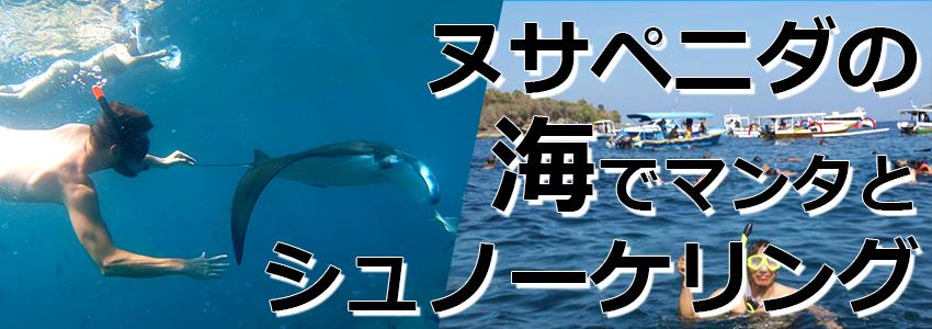 トキメキバリ島観光 厳選レンボンガン島 感動の出会い マンタポイントでマンタと一緒にシュノーケリング 特徴