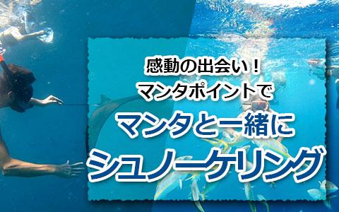 トキメキバリ島観光 厳選レンボンガン島 マンタポイントでマンタと一緒にシュノーケリング