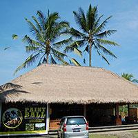 トキメキバリ島観光 Bali Pertiwi ペイントボール