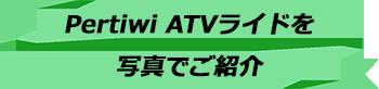 トキメキバリ島観光 厳選アクティビティ Pertiwi Quad Adventure ATVライド 写真で見る