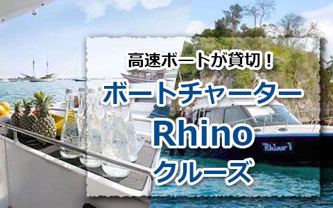 トキメキバリ島観光 厳選ボートチャーター Rhino クルーズ