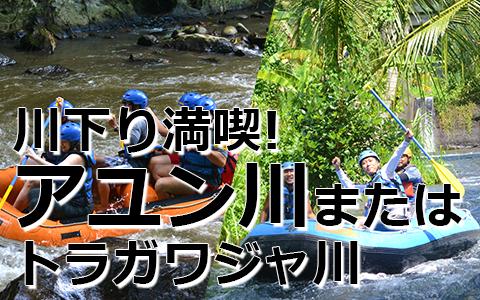 トキメキバリ島観光 厳選アクティビティ ソベック ラフティンググ 特徴