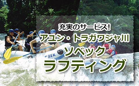 トキメキバリ島観光 厳選アクティビティ ソベック ラフティング