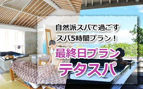 トキメキバリ島観光 テタスパ バイ ザ シー最終日プラン