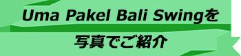 トキメキのバリ島観光 厳選アクティビティ Uma Pakel Bali Swing 写真で見る