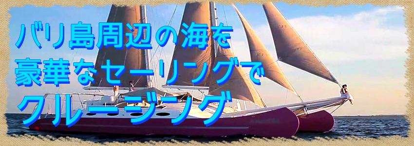 至福のバリ島観光 厳選 Aneecha Catamaran クルーズ 特徴