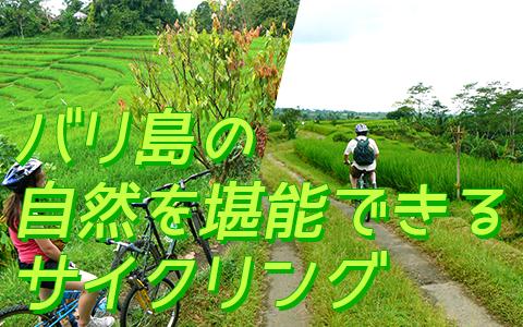 至福のバリ島観光 厳選アクティビティ アユンリバー サイクリンググ 特徴