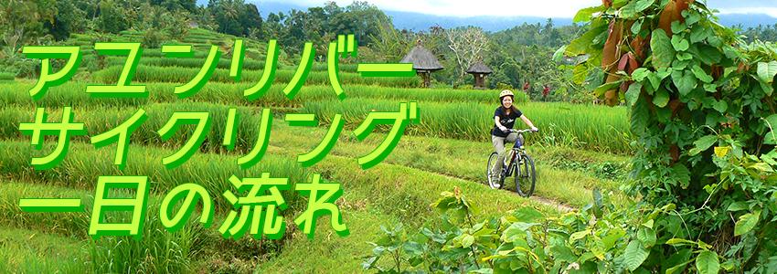 至福のバリ島観光 厳選アクティビティ アユンリバー サイクリング 一日の流れ