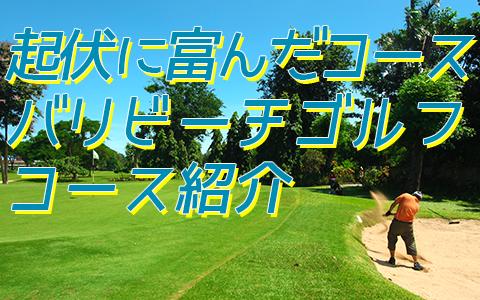 至福のバリ島観光 厳選 バリ ビーチ ゴルフのメニュー