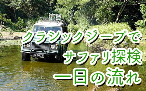 至福のバリ島観光 厳選 バリサファリ&マリンパーク探検バリトレイル 一日の流れ
