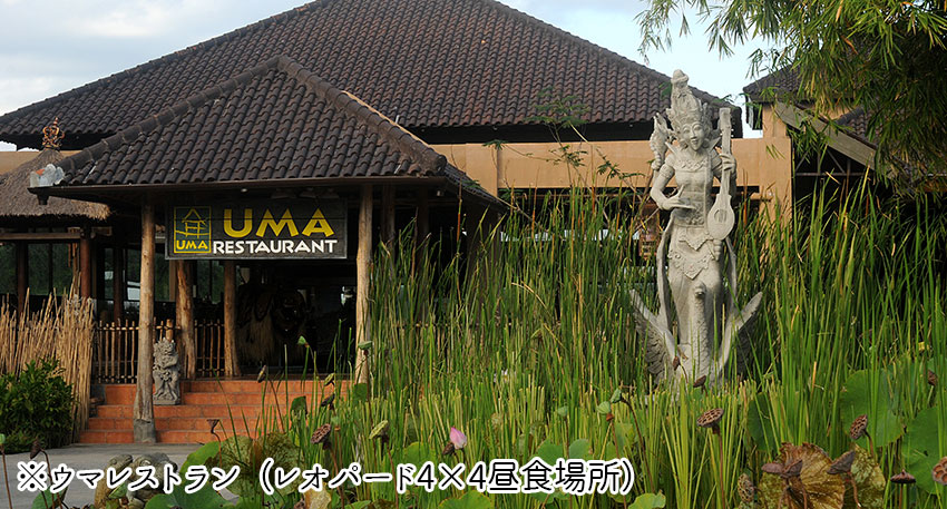 レオパード4×4の昼食場所のウマレストラン