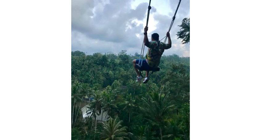 ジャングルに飛び込む気持ちで楽しめます