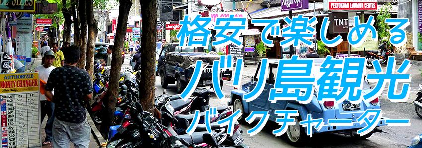 至福のバリ島観光 厳選カーチャーター バイクチャーター 特徴
