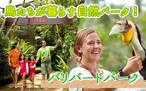 至福のバリ島観光 厳選 バリ バード パーク
