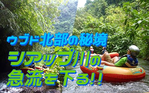至福のバリ島観光 厳選アクティビティ キャニオンチューブ 特徴