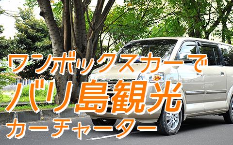至福のバリ島観光 厳選カーチャーター スズキ APV 特徴