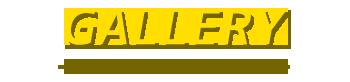 至福のバリ島観光 厳選 カーチャーター トヨタ アパンザーG 写真で見る