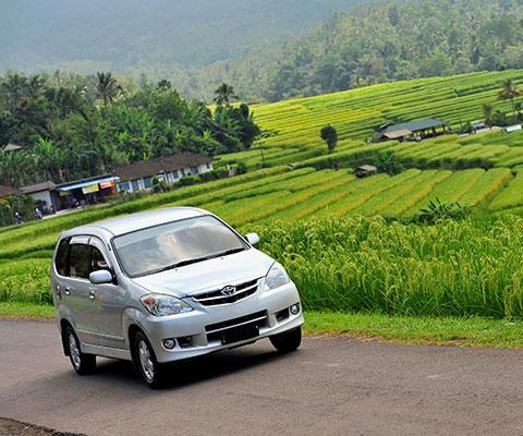 バリ島で一番人気のスタンダード車