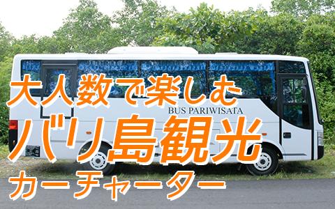 至福のバリ島観光 厳選カーチャーター 中型バス 特徴