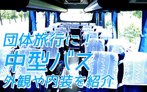 至福のバリ島観光 厳選カーチャーター 中型バス 外観や内装をご紹介