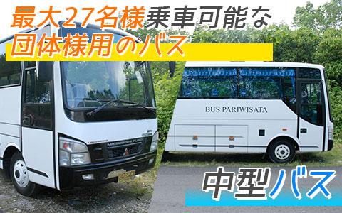 至福のバリ島観光 厳選カーチャーター 中型バス
