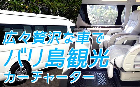 至福のバリ島観光 厳選カーチャーター ハイエース特別仕様車 特徴