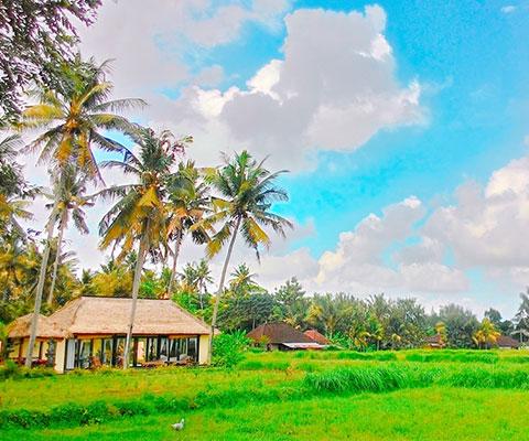 リゾートを感じるバリ島