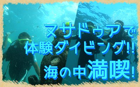 至福のバリ島観光 厳選マリンスポーツ ヌサドゥアde体験ダイビング(バリ ドルフィン社) 特徴