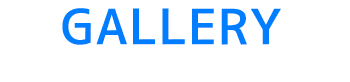 至福のバリ島観光 厳選マリンスポーツ ヌサドゥアde体験ダイビング(バリ ドルフィン社) 写真で見る