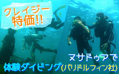 至福のバリ島観光 厳選マリンスポーツ ヌサドゥアde体験ダイビング(バリ ドルフィン社)