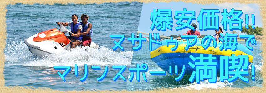 至福のバリ島観光 厳選マリンスポーツ マリンスポーツ単品(バリドルフィン社) 特徴