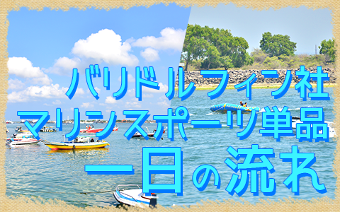 至福のバリ島観光 厳選マリンスポーツ マリンスポーツ単品(バリドルフィン社) 一日の流れ