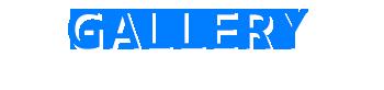 至福のバリ島観光 厳選マリンスポーツ マリンスポーツ単品(バリドルフィン社) 写真で見る