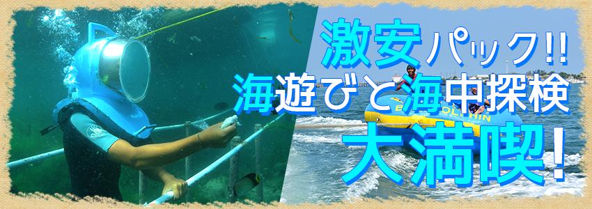 至福のバリ島観光 厳選マリンスポーツ シーウォーカー・パッケージ7in1 バリ ドルフィン社 特徴