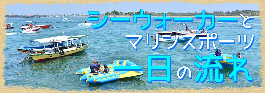 至福のバリ島観光 厳選マリンスポーツ シーウォーカー・パッケージ7in1 バリ ドルフィン社 一日の流れ