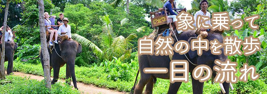 至福のバリ島観光 厳選動物ふれあい エレファントキャンプ 一日の流れ