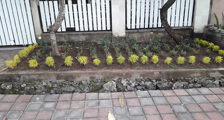 トキメキバリ島観光 バリ島の家21