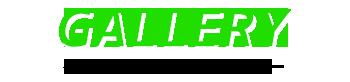 至福のバリ島観光 厳選 バリ ハンダラカントリークラブ 写真で見る