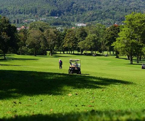 緑に囲まれた高原のコース