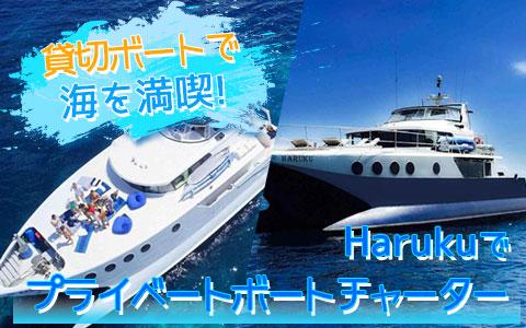 至福のバリ島観光 厳選ボートチャーター Haruku クルーズ
