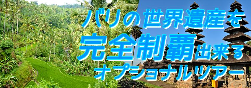 バリ島 厳選オプショナルツアー バリの世界遺産 完全制覇ツアー 特徴
