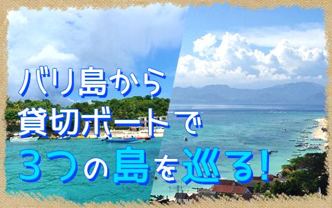 至福のバリ島観光 厳選レンボンガン島 3つの離島巡り レンボンガン島、ペニダ島、チェニガン島 特徴