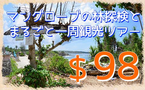 至福のバリ島観光 厳選レンボンガン島 マングローブ林とレンボンガン島まるごと一周観光ツアー 特徴