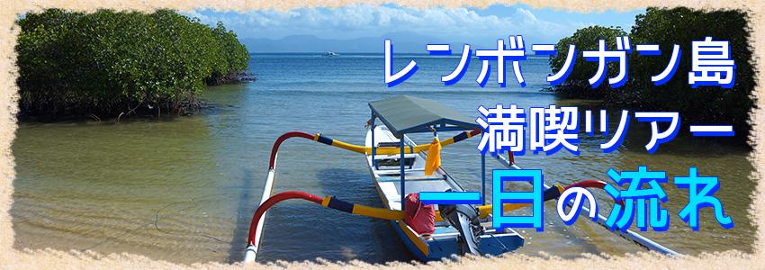 至福のバリ島観光 厳選レンボンガン島 マングローブ探検とシュノーケリングツアー 一日の流れ